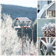 Herzenswärme Wind Turbine, Dandelion, Flowers, Plants, Inspiration, Hot Chocolate, Winter Time, Heart, Biblical Inspiration
