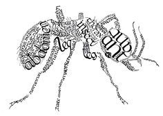 Ant art - to put in our study with the ants Word Art, Wort Collage, Blackwork, Visual Art Lessons, Poesia Visual, Calligraphy Text, Beautiful Handwriting, Learn Art, Typography Inspiration