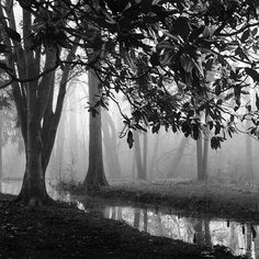 Black and White Photography / landscape / by NicholasBellPhoto, $50.00