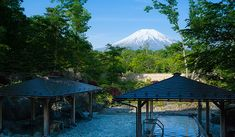 山中湖温泉 紅富士の湯 露天風呂 石の湯と檜の湯