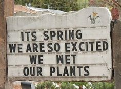 """Garden Shop Sign: """"It's Spring! We are so excited we wet our plants!"""""""