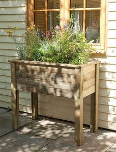 Garden Dividers | Brighten up your borders with some timber or willow edging. Edging ...