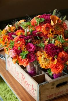 Love these colors!  Orange, fuchia, lime, gold flowers Maybe I can grow something like these !!