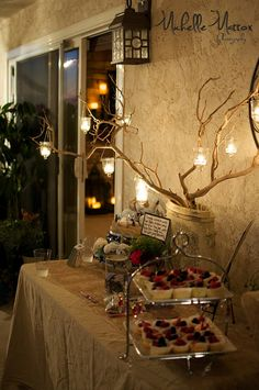 Rustic Baby Shower Lights. I like the idea of branches, just don't know for the lighting