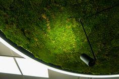 <h1>Peab</h1><p>Sisustusta suunniteltaessa keskitytään herkästi vain lattiatilaan ja seiniin, jolloin katon potentiaali jää hyödyntämättä. Ratkaisimme Peabin tyhjän katon haasteen näyttävällä sammaleella. Valot korostavat entisestään sammaleen kaunista vihreää sävyä. </p>