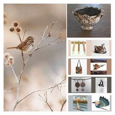 """""""A little bird told me to check out these finds/shops!"""" by sktenner ❤ liked on Polyvore featuring interior, interiors, interior design, home, home decor and interior decorating"""