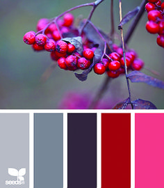 Great winter palette