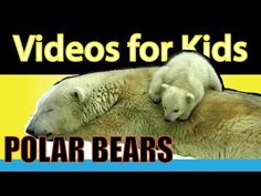 Videos for Kids - Fire Trucks for Children. This fun and educational video includes fire trucks in action, leaving the fire department, putting up the ladder...