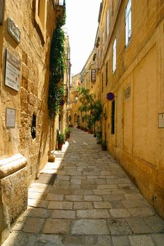 Look at this stupidly cute alley. Look at it. It's real. It exists.   14 Pics That Prove Malta Is The Most Underrated Country In The Mediterranean