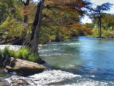 San Marcos River, San Marcos, TX - free river access, tube or kayak rentals available - clean clear cold water <3