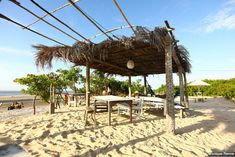 Atins-e-canto-de-atins Pergola, Fair Grounds, Outdoor Structures, Capybara, Ponds, Bowrider, Sidewalk, Brazil, Park