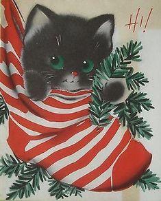 "Kitten in a Stocking says ""Hi!"""