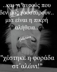 Funny Greek Quotes, Funny Quotes, Funny Statuses, Funny Times, Great Words, True Words, Favorite Quotes, Laughter, Funny Pictures