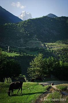 Caucasus mountains, a view to the mountain of Ushba. Georgia. Photo © Soili Mustapää.