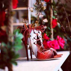 #Regram @malonesouliers on @LatelierBelgrade's Instagram  Malone Souliers terracotta panel elaphe, suede, nappa 'Savannah' lace-up sandals  #MaloneSouliers #LatelierBelgrade #Savannah #elaphe #Snakeskin #RedPassion