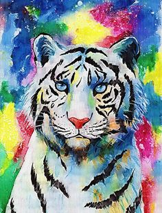 12x12 inch DIY Paint with Diamonds Animal Craft Embroidery Rhinestone Art Cross Stitch Decor 4 Pack 5D Diamond Painting Lion Tiger Wolf Eagle by Number Kits Beast Full Drill for Adults