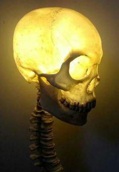Wicked Skull Lamp