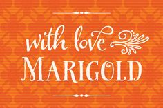 Marigold: Bundle of 8 Fabulous, Hand-drawn Fonts from Laura Worthington - MightyDeals