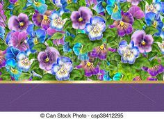 Stock Photo - Pansy Floral background - stock image, images, royalty free photo, stock photos, stock photograph, stock photographs, picture, pictures, graphic, graphics