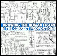 Proportions of the Human Figure : How to Draw People in Correct Ratios & Proportions with Drawing Lessons & Tutorials for Cartoons & Illustrations, Realistic Art Figure Drawing Models, Human Figure Drawing, Figure Drawing Reference, Anatomy Reference, Easy Drawing Steps, How To Draw Steps, Step By Step Drawing, Back Drawing, Guy Drawing