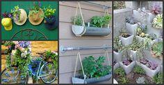 Você gosta de jardinagem? Veja agora essas 11 ideias de jardins baratos e simples que você pode ter em casa ou no apartamento gastando pouco!