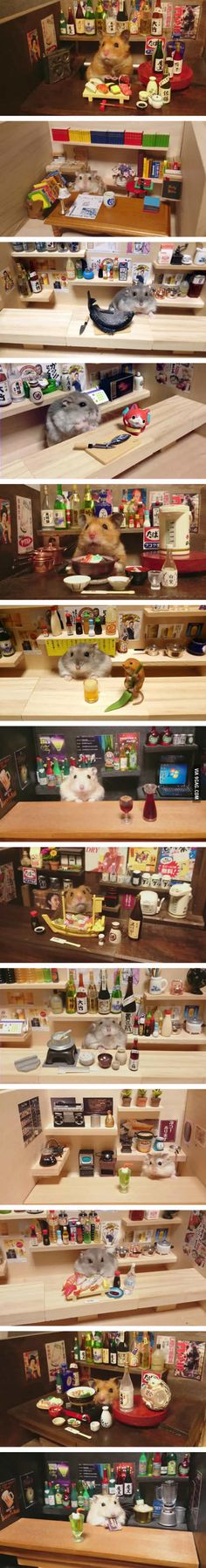 Hamster bartender (by Kawanabesatou)                                                                                                                                                                                 More