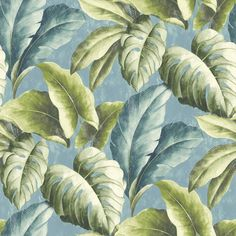 Our popular wallpaper Verena features fabulous depictions of the Monstera plant. Blue and fern-green leaves emerge from a pastel-blue background. Palm Leaf Wallpaper, Tropical Wallpaper, Botanical Wallpaper, Print Wallpaper, Home Wallpaper, Pattern Wallpaper, Plante Monstera, Pastel Blue Background, Bleu Pastel