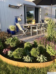 Growing Gardens, Landscaping Supplies, Outdoor Spaces, Outdoor Decor, Garden Show, Backyard, Patio, Garden Edging, Garden Seeds