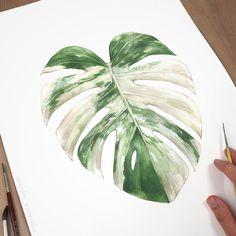 Plant Painting, Plant Art, Watercolor Plants, Watercolor Paintings, Botanical Illustration, Watercolor Illustration, Clay Wall Art, Leaf Drawing, Painting Studio