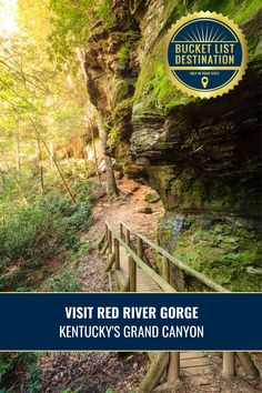 Explore the beautiful Red River Gorge in Kentucky. Enjoy amazing hiking trails, beautiful views, a unique tunnel, and more. Add this outdoor destination to your travel bucket list. Bucket List Destinations, Travel Destinations, Red River Gorge Kentucky, Daniel Boone National Forest, Hidden Beach, Natural Bridge, Outdoor Recreation, Natural Wonders, Hiking Trails