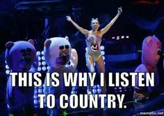 "pretty much... i had someone try to convince me that the reason why they listen to pop instead of country is because all country talked about was drinking and breakups..... well i'd rather listen to ""that"" then all of this pop crap!"