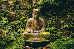 Lessons I Learned From 10 Days of Silence and Meditation |  | Observer