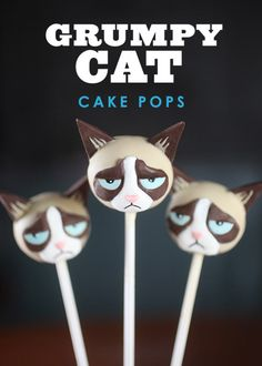 Oh Shit, Grumpy Cat Cake Pops @Alisha Sopota Sopota Sopota Sopota Sopota Akiu - they have Boo cake pops!