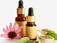 Elixir Floral, Natural Treatments, Herbalism, Lipstick, Health, Instagram, Posts, Yoga, Holistic Healing