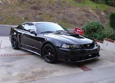 wing and Rims opinions - Forums at Modded Mustangs