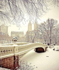 The always beautiful Bow Bridge in Central Park in the snow. Central Park turns into something out of a fairytale or storybook during snowfall and this is one of New York City's most charming winter landscapes in Central Park. New York Winter, Winter Szenen, Winter Night, Winter Park, New York City Central Park, Ville New York, New York Christmas, White Christmas, Christmas Holidays