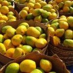 Mango fever has hit Mumbai! And you?