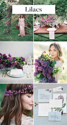 Lilacs inspiration