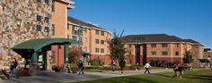 colorado mesa university campus - Google Search