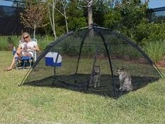 TODO SOBRE MI GATO: Gatos paracaidistas y soluciones: cerramientos, redes, gateras, verjas...