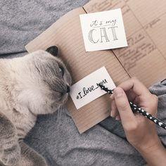 Flatlay notebook