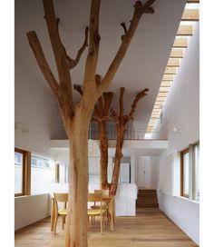 家の中に木が生えた