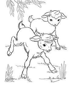 Farm animal coloring page Goat | Baby goats