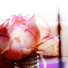 """Fotografie """"Rose"""" http://de.dawanda.com/shop/miamine"""