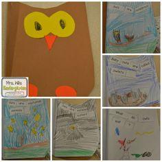 Owl Nonfiction Study!   Fun!!!