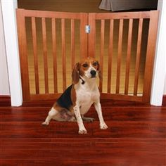 "36"" Wood Pet Gate 2 Panels Gate 2, Pet Gate, Dog Houses, Doorway, In The Heights, Corgi, Wood, Animals, Pine"