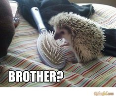 that you bro? life is sooo confusing!