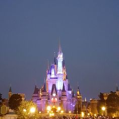 Tokyo Disneyland Fantastic Night Parade  #tokyo#disneyland#disneyresort#parade#show#mickey#minnie#cinderella#snowwhite#lucifer#aladin#jasmine#genie#pinocchio#waltdisney#holiday#japan#instaphoto#instalike#l4l#like4like misstagram.com/...