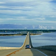 Dauphin Island, Dauphin Island, AL - a pretty nifty little island I. I drove on this Bridge it was out of this world Orange Beach Alabama, Sweet Home Alabama, Dauphin Island Alabama, Alabama Vacation, Gulf Shores Alabama, Island Pictures, Little Island, Vacation Spots, Vacation Ideas
