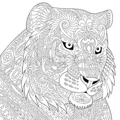 Vector Stylized Tiger Lion Wildcat Isolated On White Background Freehand Sketch For Adult Anti Stress Coloring Book Page With Doodle And Zentangle